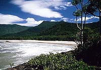 Starnd des Cape Tribulation, QUE
