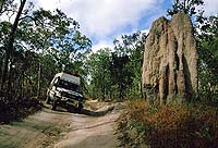 Telegraph Road, Cape York, QUE